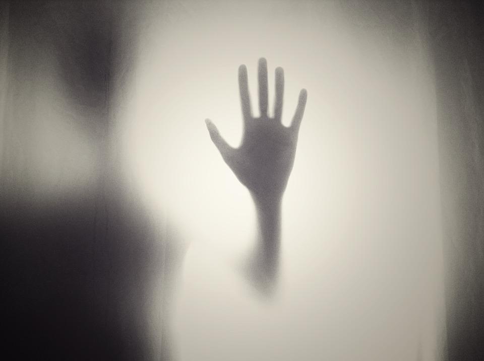 人の手のひら 華奢な手のひら モノトーンの写真