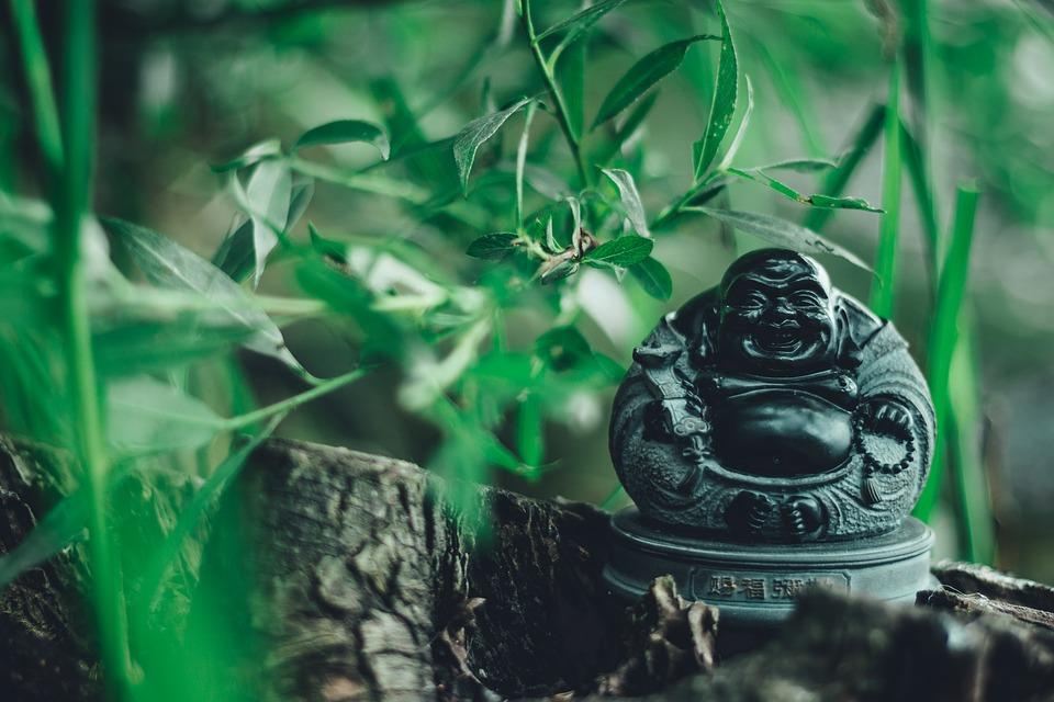 野の中の仏像